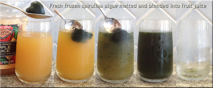 Frozen Juice